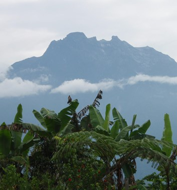 Borneo_Kinabalu_view to peak across forest and clouds
