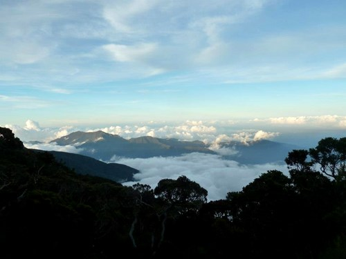 Mount Kinabalu_Kotal Route looking out over trees and clouds.jpg