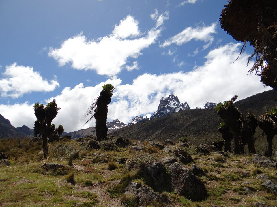 Climb The Sirimon Or Naro Moru Route Mt Kenya 2019 20