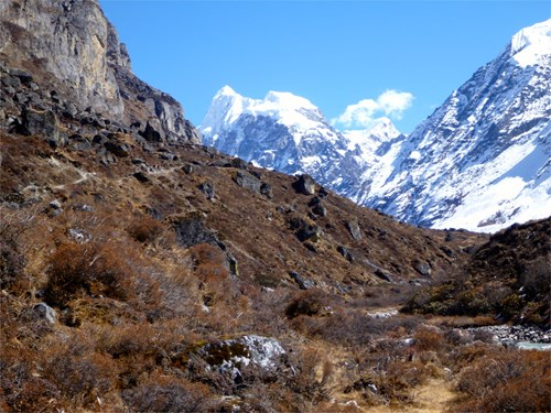 langtang valley trek.jpg (1)