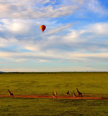 Kenya Safari - Masai Mara Hot Air Balloon