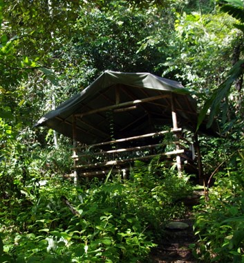 Lupa Masa Jungle Camp